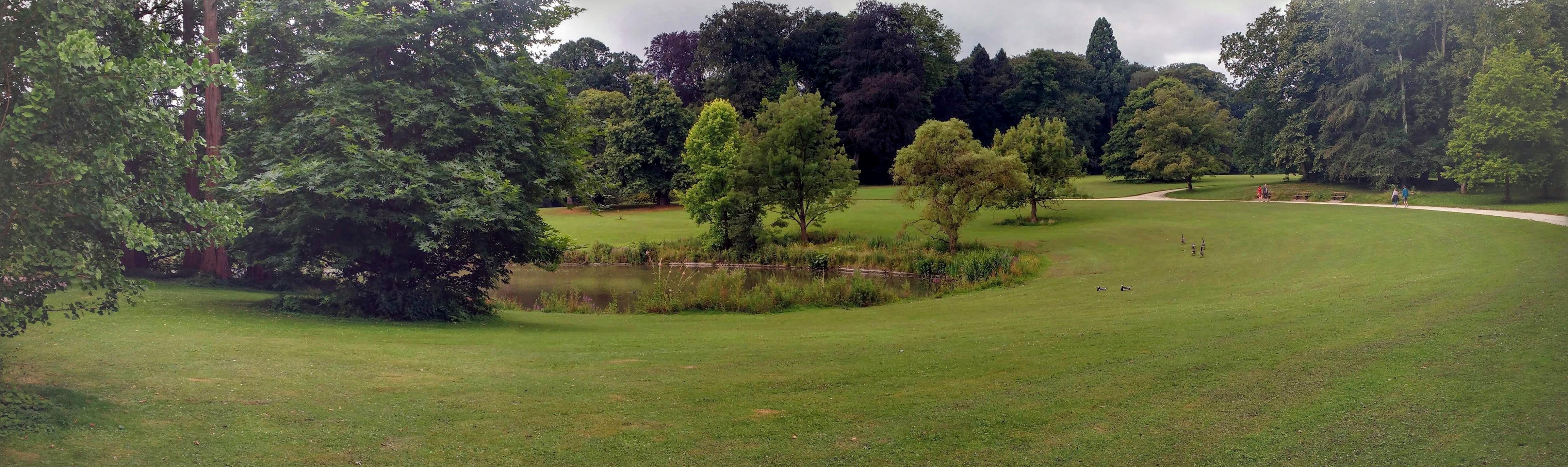 Botanical Garden Meise - Panorama