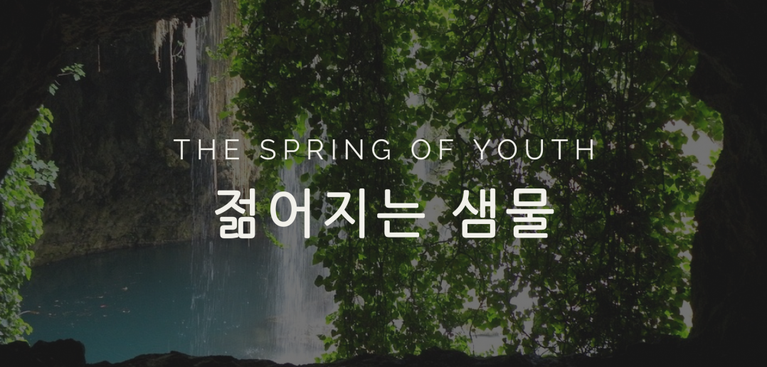 The Spring of Youth